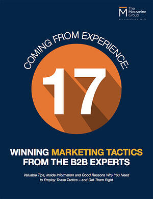 17-winningmarketing-tactics-b2b-experts